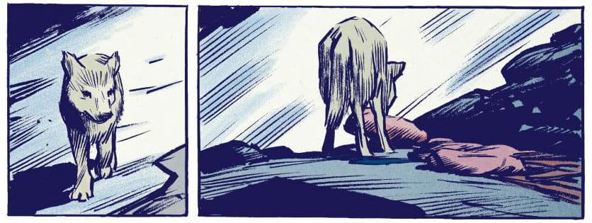Wilk - przykładowy rysunek 2